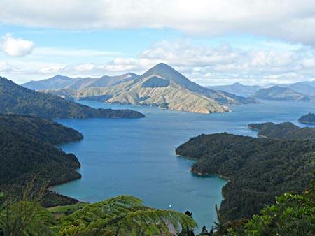 """Ein halbes Jahr bei den """"Kiwis"""": Work & Travel in Neuseeland"""