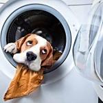 Haushaltstipps: So bekommt ihr Wäsche und Co. in den Griff